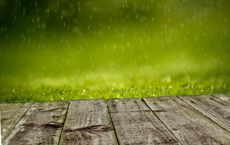 Искусственная трава и дождь красиво
