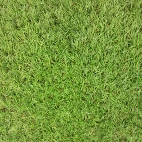 Искусственный газон BT Голландия 25mm Симферополь, Севастополь, Ялта Евпатория