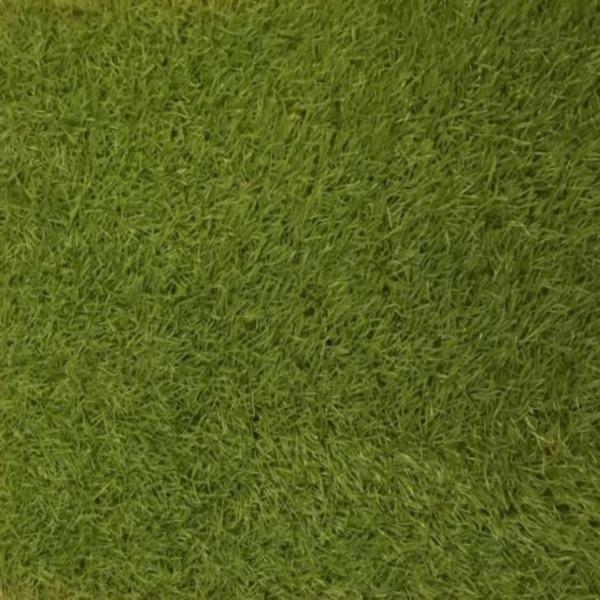 Ландшафтная трава Голландия 30мм
