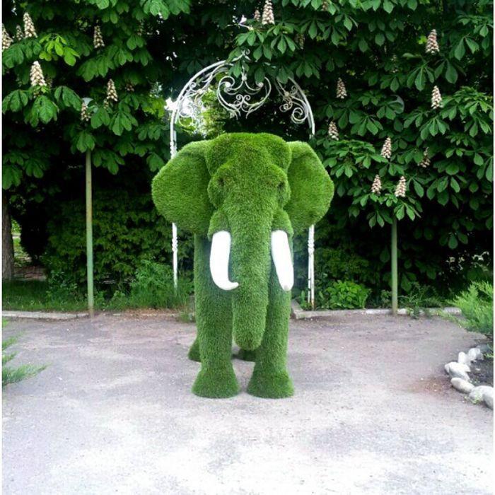 """Топиар фигура """"Слон африканский """""""