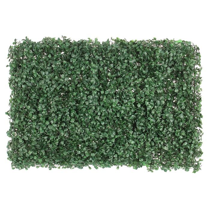 Декоративный газон, «Decograssen 5645» в Крыму