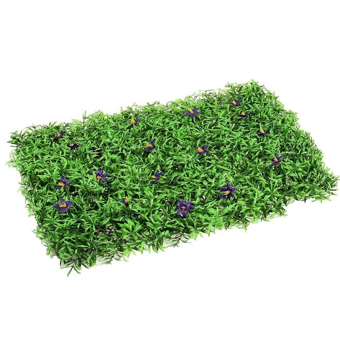Декоративный газон, «Decograssenen 2342» в Крыму