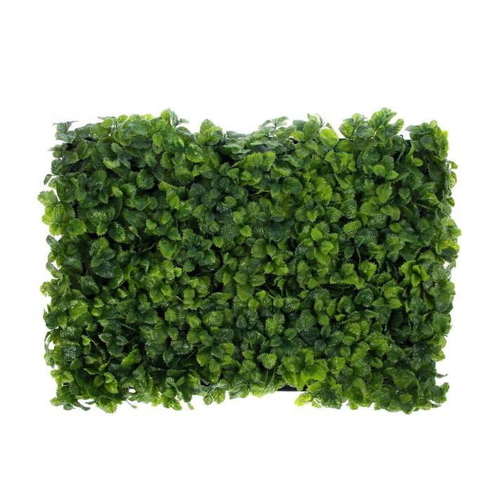Декоративный газон, «Decograssen 36877» Краснодар