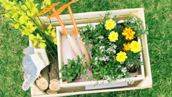 Искусственная трава в сад, в теплицу или в огород укладка
