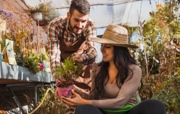 Искусственная трава в сад, в теплицу или в огород урожай
