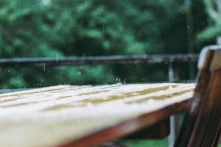 Как сохранить искусственную траву в жёстких погодных условиях дождь ливень