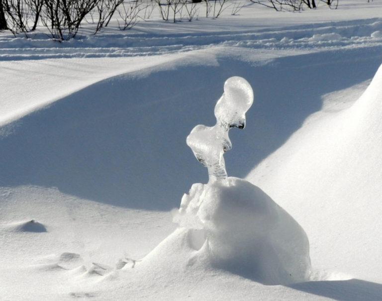 Как сохранить искусственную траву в жёстких погодных условиях снег