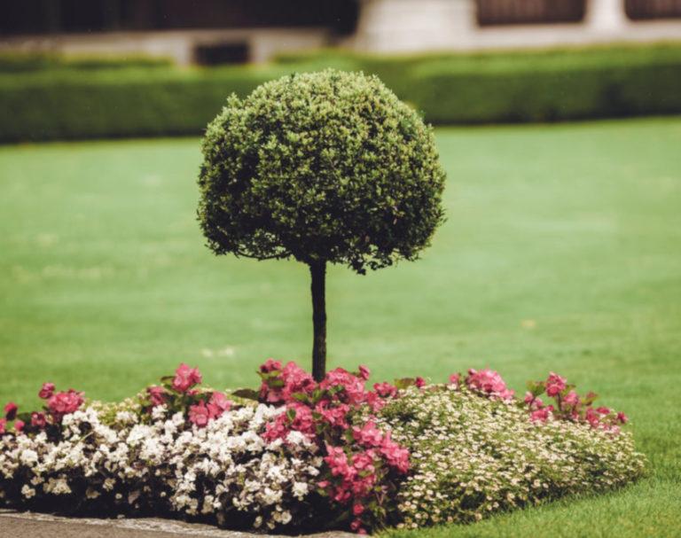 Использование ландшафтного искусственного газона
